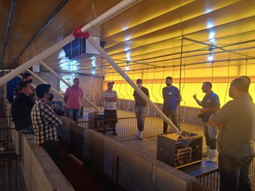 Novo galpão de suínos começa  a produzir na próxima semana