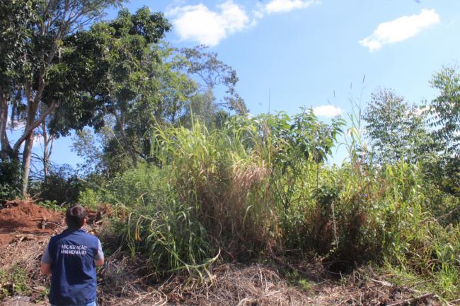 Prefeitura fiscaliza a situação de terrenos baldios no município