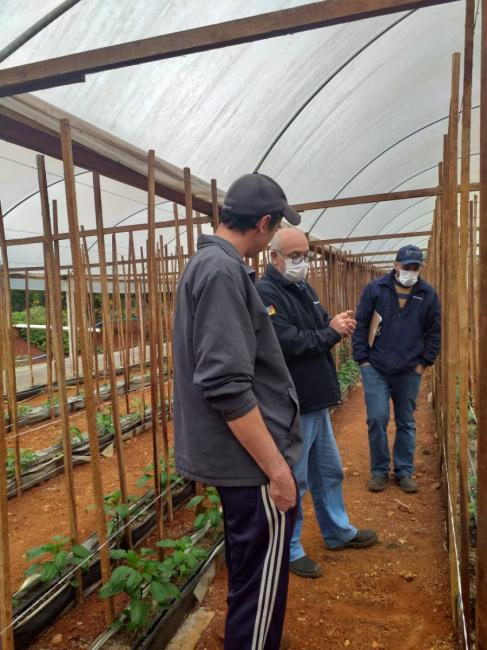 Emater realiza visitas técnicas em propriedades rurais