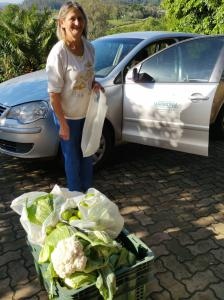 Feirante de Harmonia doa frutas e hortaliças ao Hospital Sagrada Família